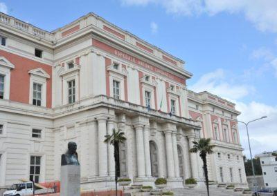 Highlights in Immuno-Oncologia Renale – Napoli 11 Febbraio 2019